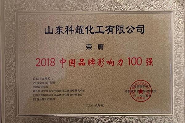 中国品牌影响力100强